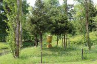 goldene-urne-01